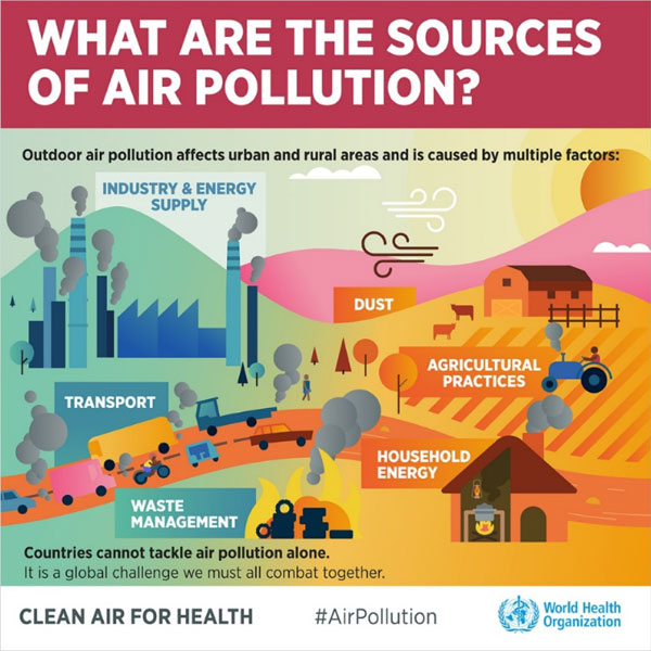 Figure 1: Where does air pollution come from?